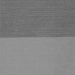 PALATINO NEGRO 203 09